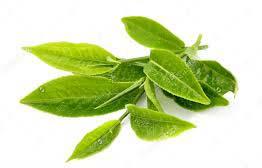 składnik jagód acai