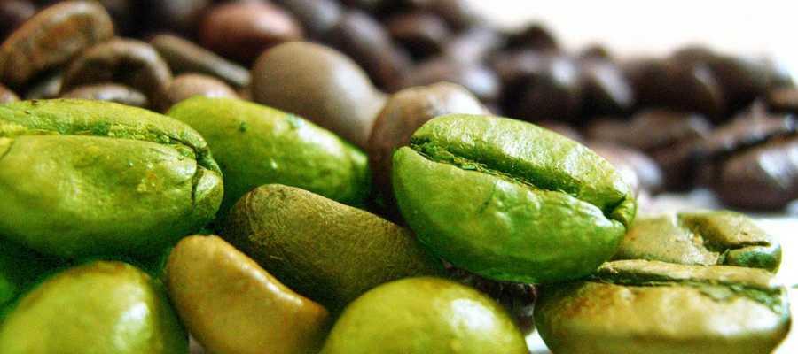 Zielona kawa w tabletkach na odchudzanie, gdzie kupić